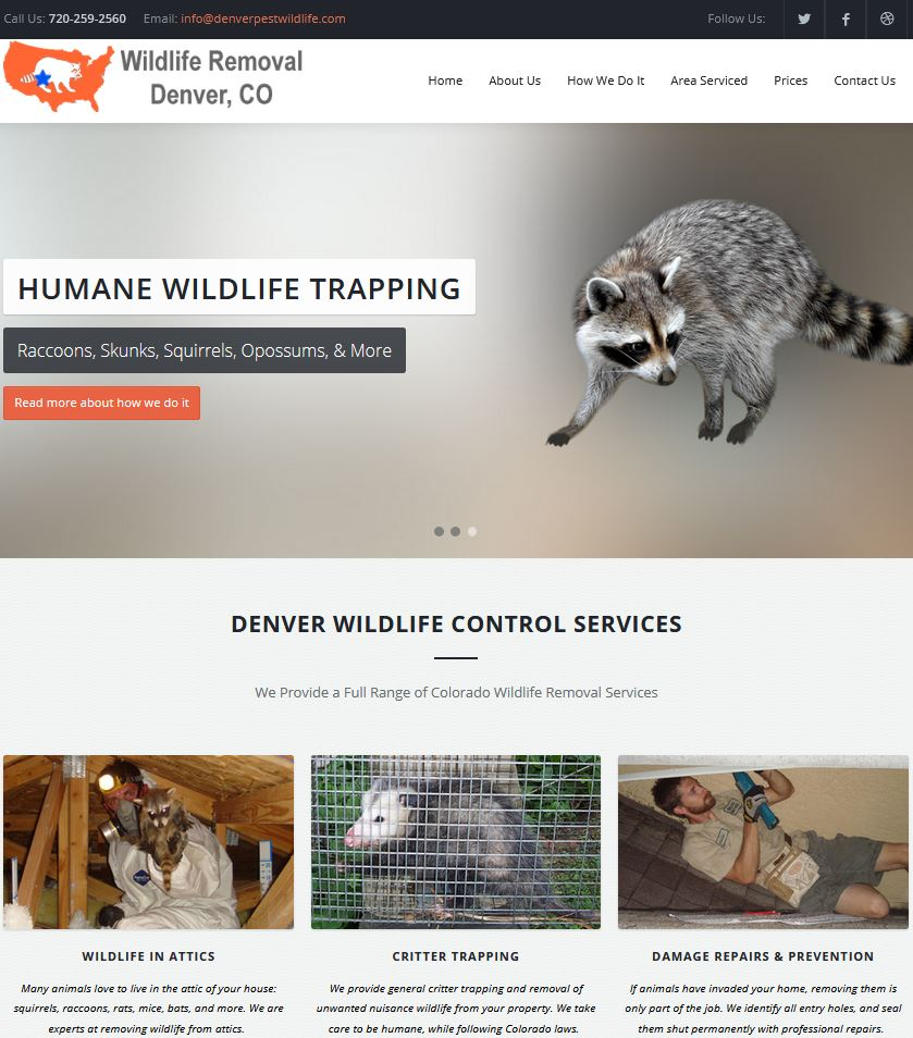 Wildlife Removal local SEO